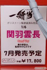 アイズプロジェクト 一騎当千 関羽雲長 Cami Ver POP