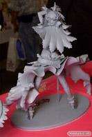 クレイズ Fate/EXTRA CCC セイバー 全身 03