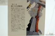 ボークス L.E.D. MIRAGE V3 レッドミラージュ 29