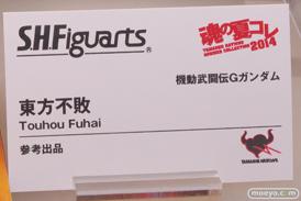バンダイ 魂の夏コレ2014 ガンダム 魂ネイション S.H.Figarts 東方不敗 POP