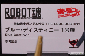 バンダイ 魂の夏コレ2014 ガンダム 魂ネイション ROBOT魂 ブルー・ディスティニー1号機 POP