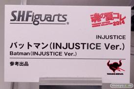 バンダイ 魂の夏コレ2014 キャラクター 魂ネイション S.H.Figarts バットマン(INJUSTICE Ver.) POP