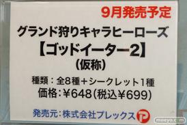 プレックス グランド狩りキャラヒーローズ【ゴッドイーター2】(仮称) 06