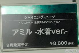 メガホビEXPO2014 Spring コトブキヤ シャイニング・ハーツ アミル -水着ver.- POP