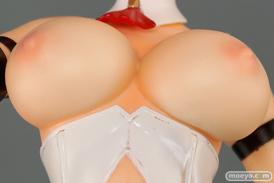 レチェリー フェアリーテイルフィギュア ヴィランズ vol.01 毒林檎の魔女 クリムゾンレッドver. 画像 フィギュア キャストオフ おっぱい 乳首 36
