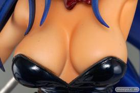 アミエ・グラン 一騎当千 集鍔闘士血風録 関羽雲長 バニーver.ベアトップ フィギュア 画像 16