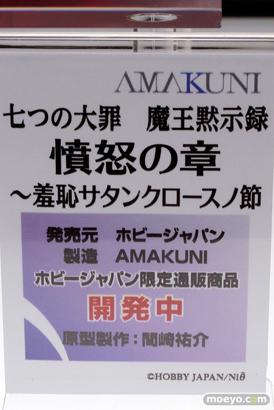 キャラホビ2014 イベント 画像 レビュー フィギュア ホビージャパン 09