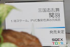 東京ゲームショウ2014 画像 フィギュア レビュー スクウェア・エニックス 三国志乱舞 関羽  11