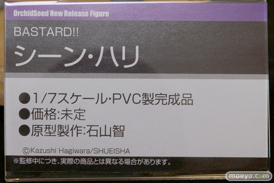 BASTARD!! シーン・ハリ オーキッドシード 画像 サンプル レビュー フィギュア 石山智 宮沢模型 第35回 商売繁盛セール 18