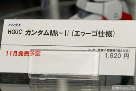 HGUC ガンダムMk-II(エゥーゴ仕様) バンダイ 画像 サンプル レビュー プラモデル 東京おもちゃショー2015 10