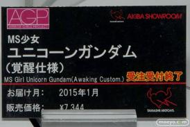 TAMASHII NATIONS AKIBA ショールームでの魂ネイション2015 アフター展示の様子02
