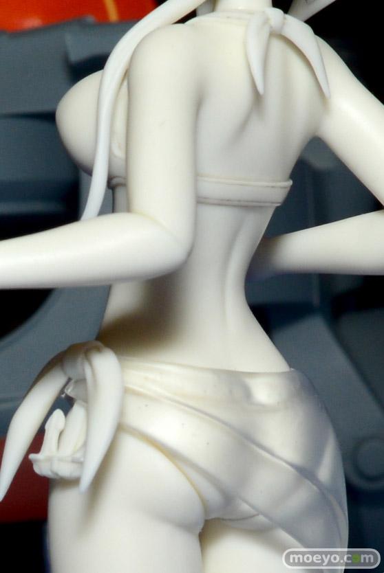 画像 フィギュア サンプル レビュー ワンダーフェスティバル 2016[夏] たいらんど とらっしゅくろっく ほっけ水産 02