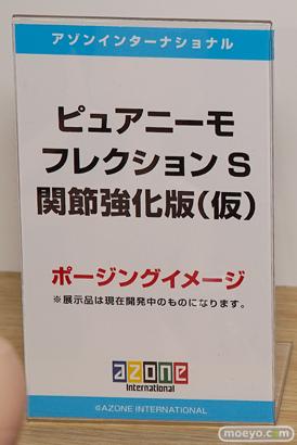 AK-GARDEN【11】 アオシマ アゾン ブースの様子画像28