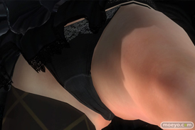 DEAD OR ALIVE 5 Last Roundの『アクアプラス』コラボコスチューム ヒトミ レイファン ティナ エレナ クリスティ のパンツ画像14