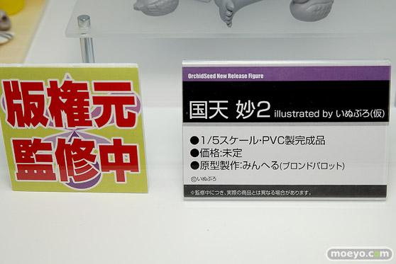 オーキッドシードの国天妙2 illustrated by いぬぶろ(仮)の新作アダルトロリエロフィギュア原型画像11