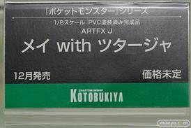 コトブキヤのARTFX J ポケットモンスターシリーズ メイ with ツタージャの新作フィギュア原型画像13