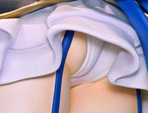 FIGUREX新作フィギュア「100cmサイズフィギュア 超次元ゲイム ネプテューヌ 「ノワール」」予約受付開始!【WF2017冬】