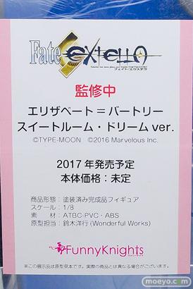 ワンダーフェスティバル2017[夏]のアオシマブースの新作フィギュア画像08