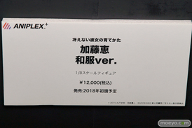 C3AFA TOKYO 2017でのアニプレックスプラス5周年記念フィギュア展示の様子32