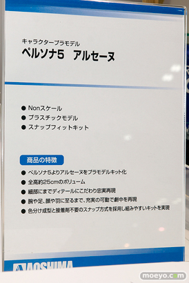 第57回 全日本模型ホビーショー アオシマ アクアマリン アゾン ブース画像36