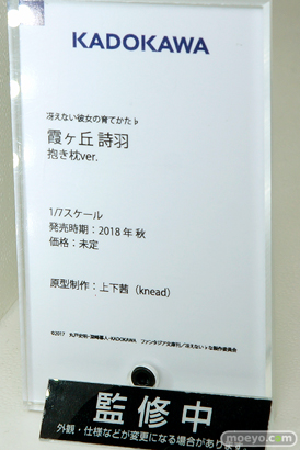 KADOKAWAの冴えない彼女の育てかた♭ 霧ヶ丘詩羽 抱き枕ver.の新作フィギュア彩色サンプル画像11