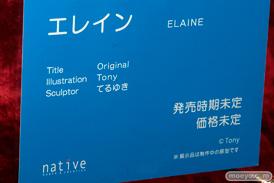 ネイティブのエレインの新作アダルトフィギュア原型画像17