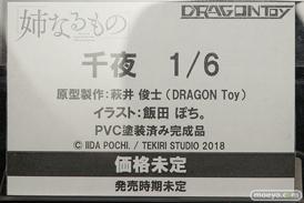ワンダーフェスティバル 2018[夏] リアルアートプロジェクト ドラゴン・トイ07