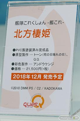 ワンダーフェスティバル 2018[夏] キューズQ19