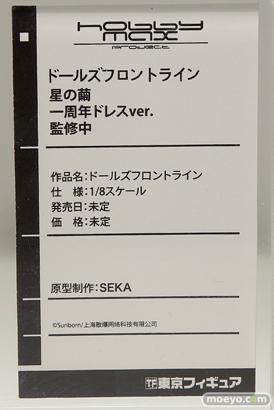 ワンダーフェスティバル 2018[夏] 東京フィギュア54