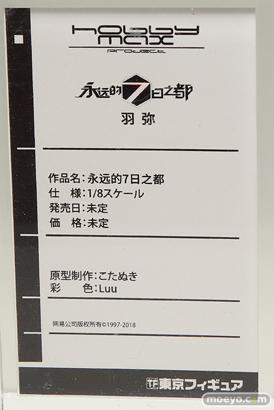 ワンダーフェスティバル 2018[夏] 東京フィギュア56