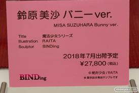 ワンダーフェスティバル 2018[夏] BINDing07
