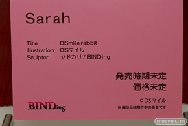 BINDing DSmile rabbit Sarah 13
