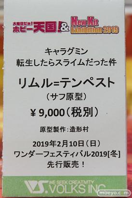 秋葉原の新作フィギュア展示の様子 20190104 47