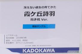 画像 フィギュア サンプル レビュー ワンダーフェスティバル 2019[冬] KADOKAWA 27
