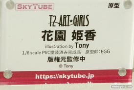スカイチューブ T2 ART★GIRLS 花園姫香 illustration by Tony フィギュア エロ キャストオフ EGG 13