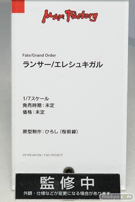 マックスファクトリー Fate/Graund Order ランサー/エレシュキガル フィギュア ひろし 11