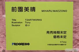 プログレス T2ARTWORKS 前園美晴 Tony るい フィギュア エロ 14
