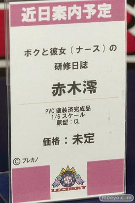 レチェリー ボクと彼女(ナース)の研修日誌 赤木澪 CL エロ っキャストオフ フィギュア 12