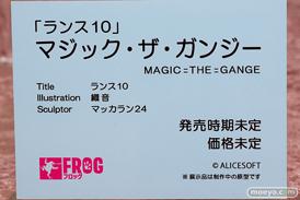 FROG ランス10 マジック・ザ・ガンジー 織音 マッカラン24 エロ フィギュア 12