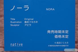 ネイティブ ノーラ 島田フミカネ アビラ エロ フィギュア 14