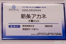 アクアマリン SSSS.GRIDMAN 新条アカネ 水着style フィギュア 榊馨 11