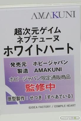 ホビージャパン 超次元ゲイムネプテューヌ ホワイトハート フィギュア AMAKUNI せつき 10