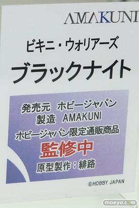 ホビージャパン ビキニ・ウォリアーズ ブラックナイト フィギュア 緋路 10