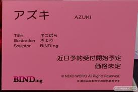 BINDing ネコぱら アズキ エロ キャストオフ フィギュア さより 16