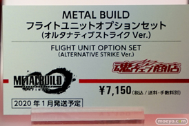 METAL BUILD∞ -メタルビルドインフィニティ- 38