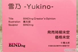BINDing 雪乃 -Yukino- 魔太郎 フィギュア エロ キャストオフ 13
