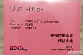BINDing リオ -Rio- 魔太郎 フィギュア エロ キャストオフ 12