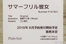 PinkCat サマーフリル少女 フィギュア エロ キャストオフ 三上裕仁 荻野アつき(やんよ)  13