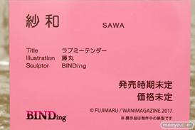 ワンダーフェスティバル 2019[夏] BINDing ラブミーテンダー 紗和 藤丸 エロ キャストオフ フィギュア 13