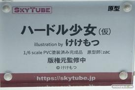 スカイチューブ ハードル少女(仮) illustration by けけもつ zac エロ フィギュア 12